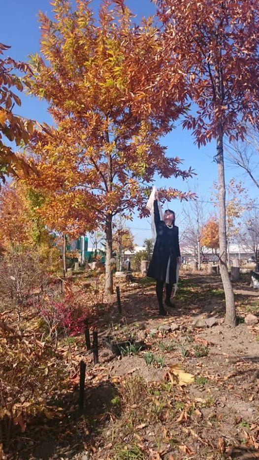 画像に含まれている可能性があるもの:1人以上、立ってる(複数の人)、木、空、植物、屋外、自然
