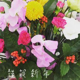 画像に含まれている可能性があるもの:花、植物